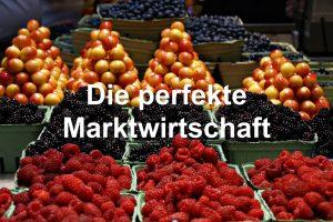 """Wie funktioniert die """"perfekte"""" Marktwirtschaft und was sind meritorische Güter?"""